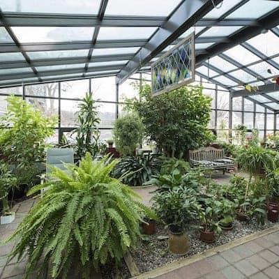 VM AL plants